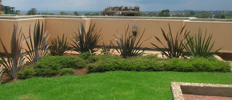 Morningside Roof Garden - Lariak Landscapes
